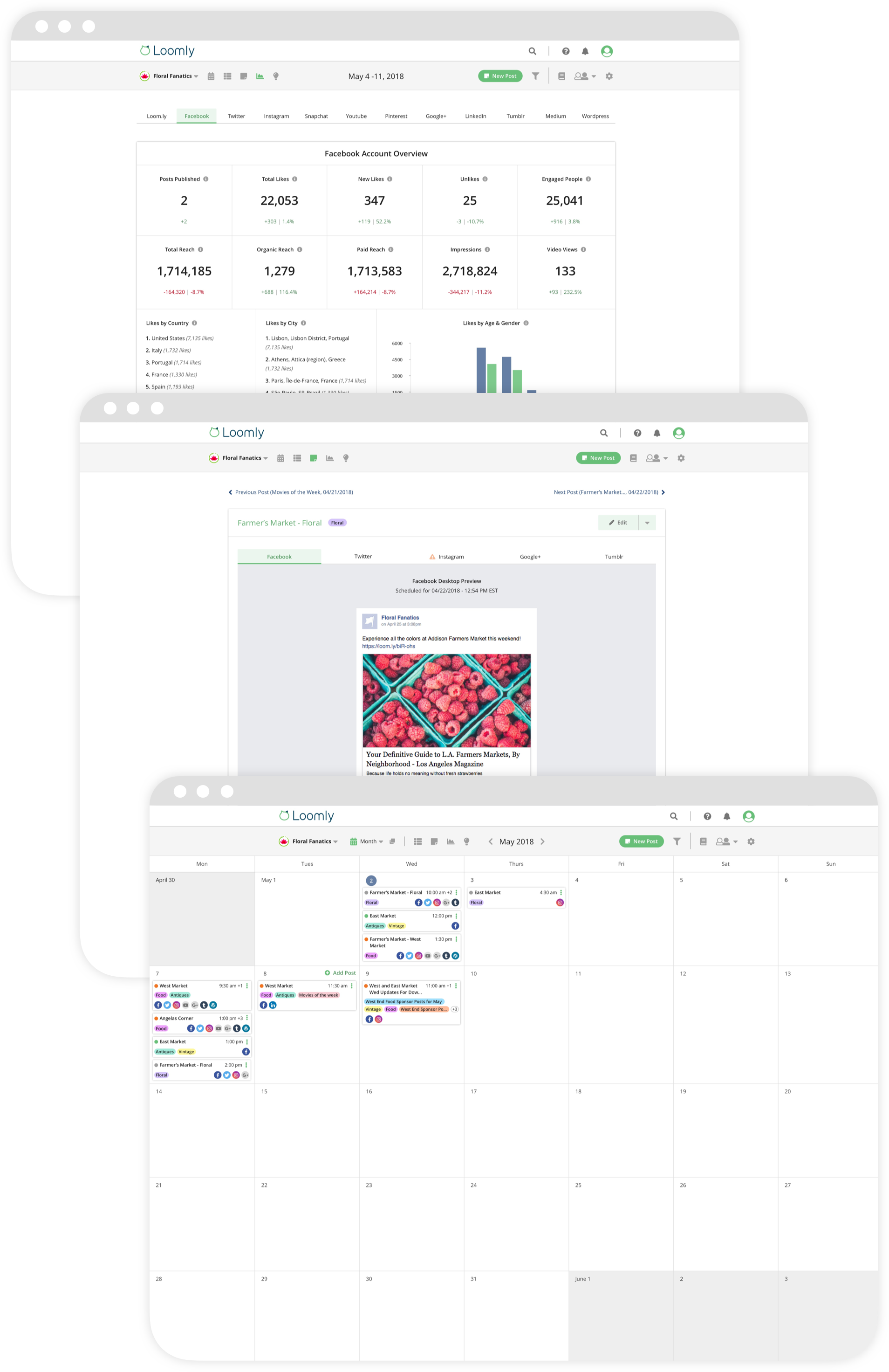 Loomly brand success platform all features in one tool vertical screenshots